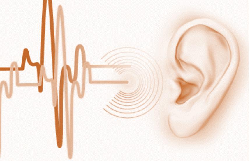 Kulak Çınlaması (Tinnitus), Kulak çınlamasında teşhis için neler gereklidir?, Kulak Çınlaması tedavisi nasıl yapılır?, objektif ve sübjektif..